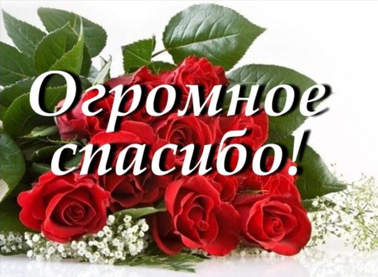 http://www.panteleymonovka.com/wp-content/uploads/2016/12/121497318_2-768x563.jpg